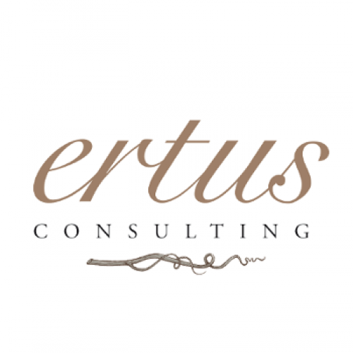 Groupe Ertus consulting